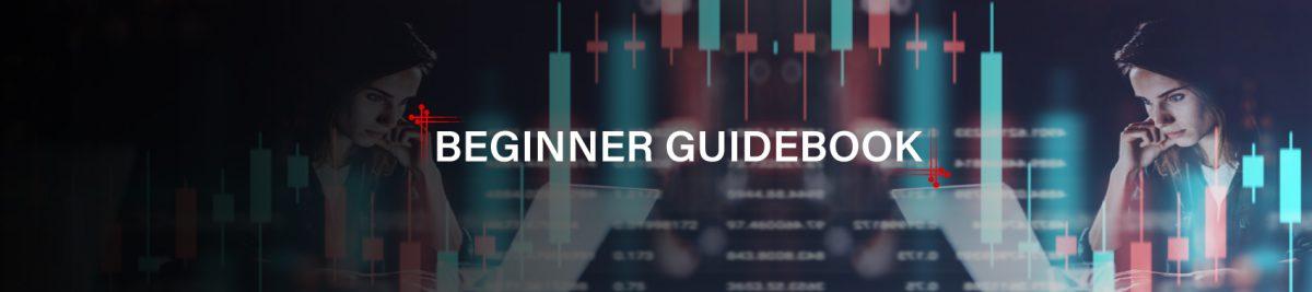 Beginner Guidebook