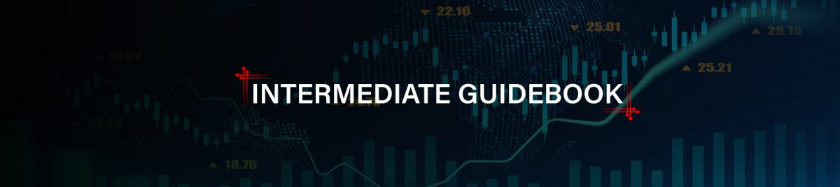 Intermediate Guidebook
